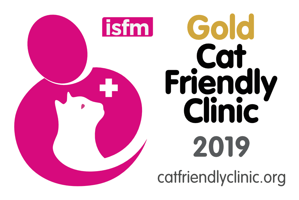 Gold Cat Friendly Clinic 2019 logo